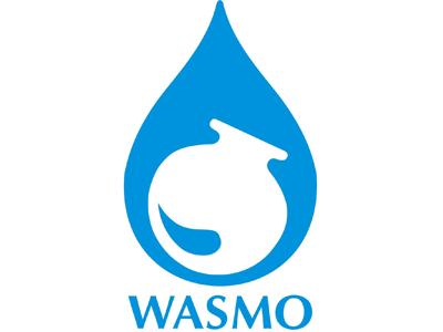WASMO Walk-in Interview