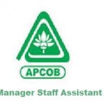 APCOB Staff Assistant, Manager Hall Ticket