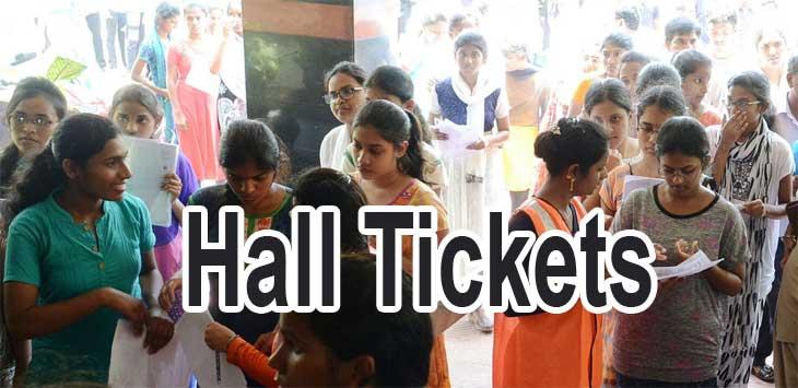 AP PGCET Hall Ticket
